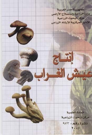 إنتاج عيش الغراب    المادة العلمية : مركز البحوث الزراعية    نشرة رقم : 973   Pic1